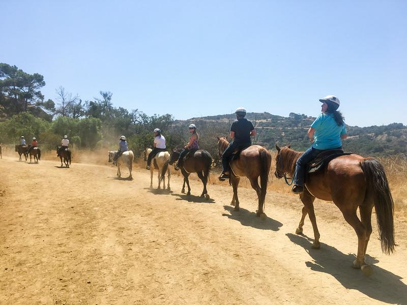 17 08-19 Sunset Ranch 7239