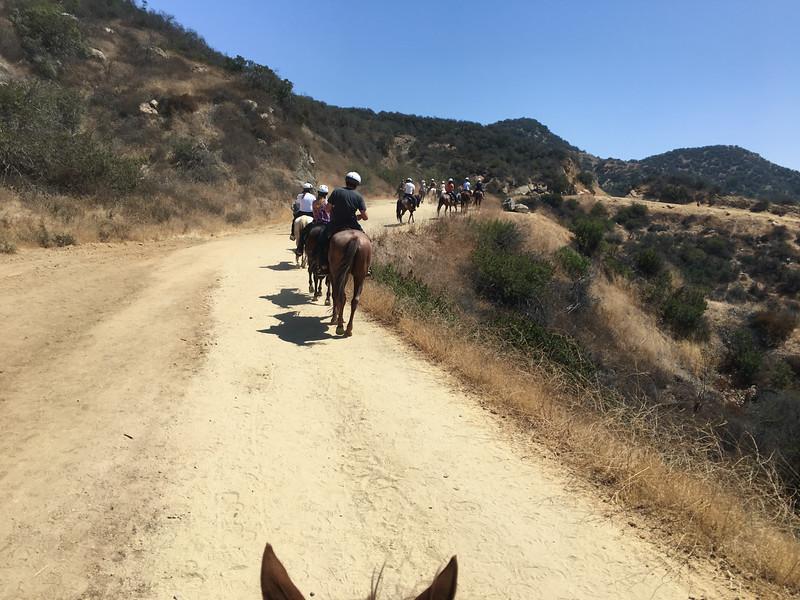 17 08-19 Sunset Ranch 8960