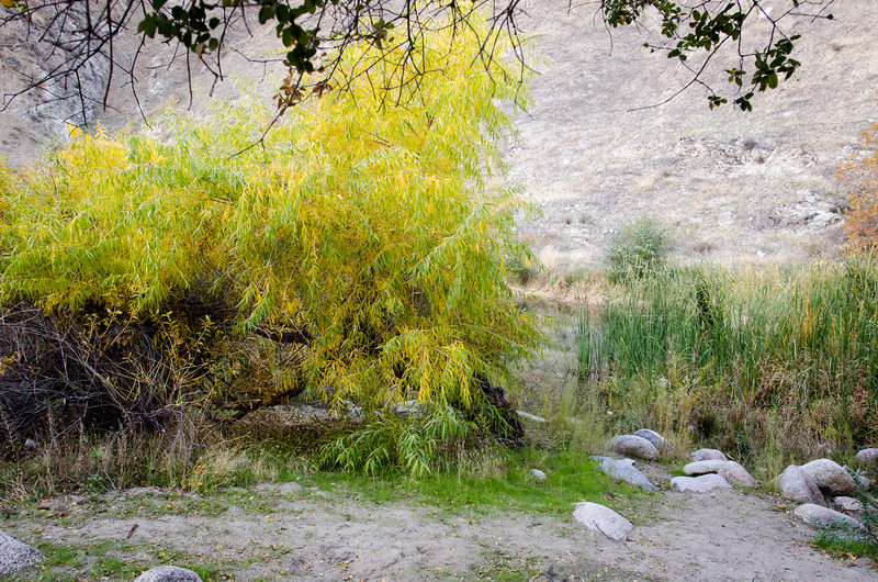 15 11-22 Canyon campground 0765
