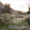 15 11-22 Canyon campground 0782