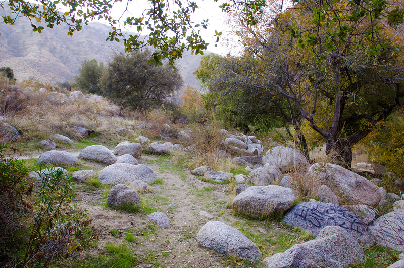 15 11-22 Canyon campground 0767
