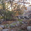 15 11-22 Canyon campground 0779
