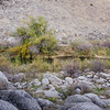 15 11-22 Canyon campground 0778