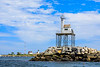 MA-GLOUCESTER-DOGBAR BREAKWATER LIGHT-Eastern Point Light