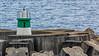Açores-São Miguel-Ribeira Quente-Ribeira Quente Fishing Port Mole