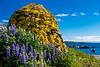 Iceland-Westfjords-Holmavik