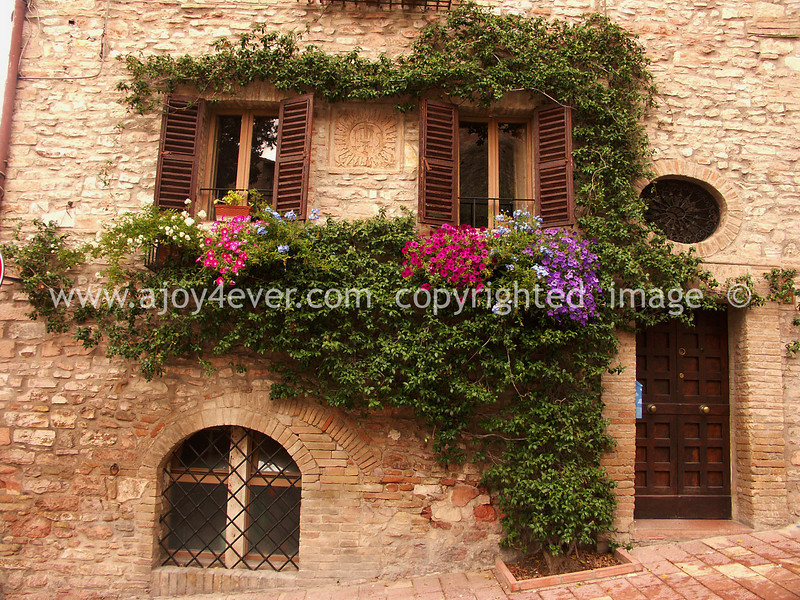 PICT0017 assisi L