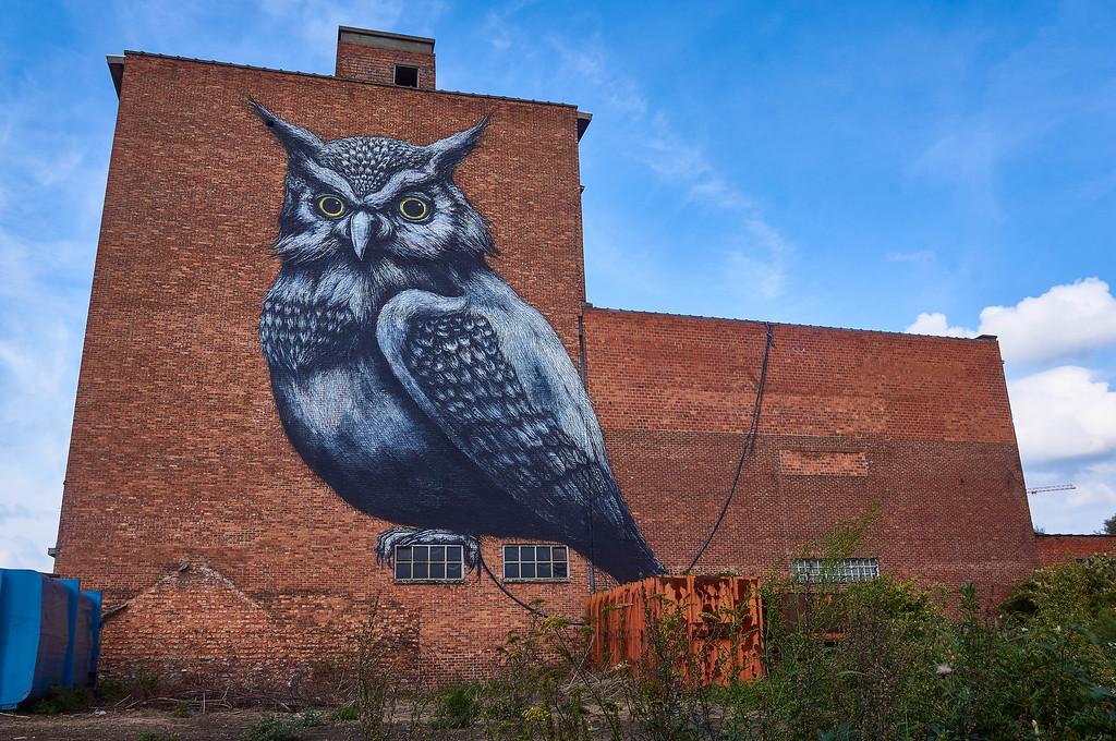 Mural by ROA in Hasselt, Belgium