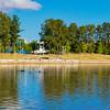 Swans on Lake Ginninderra