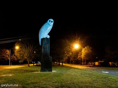 The Owl Statue on Thursday morning