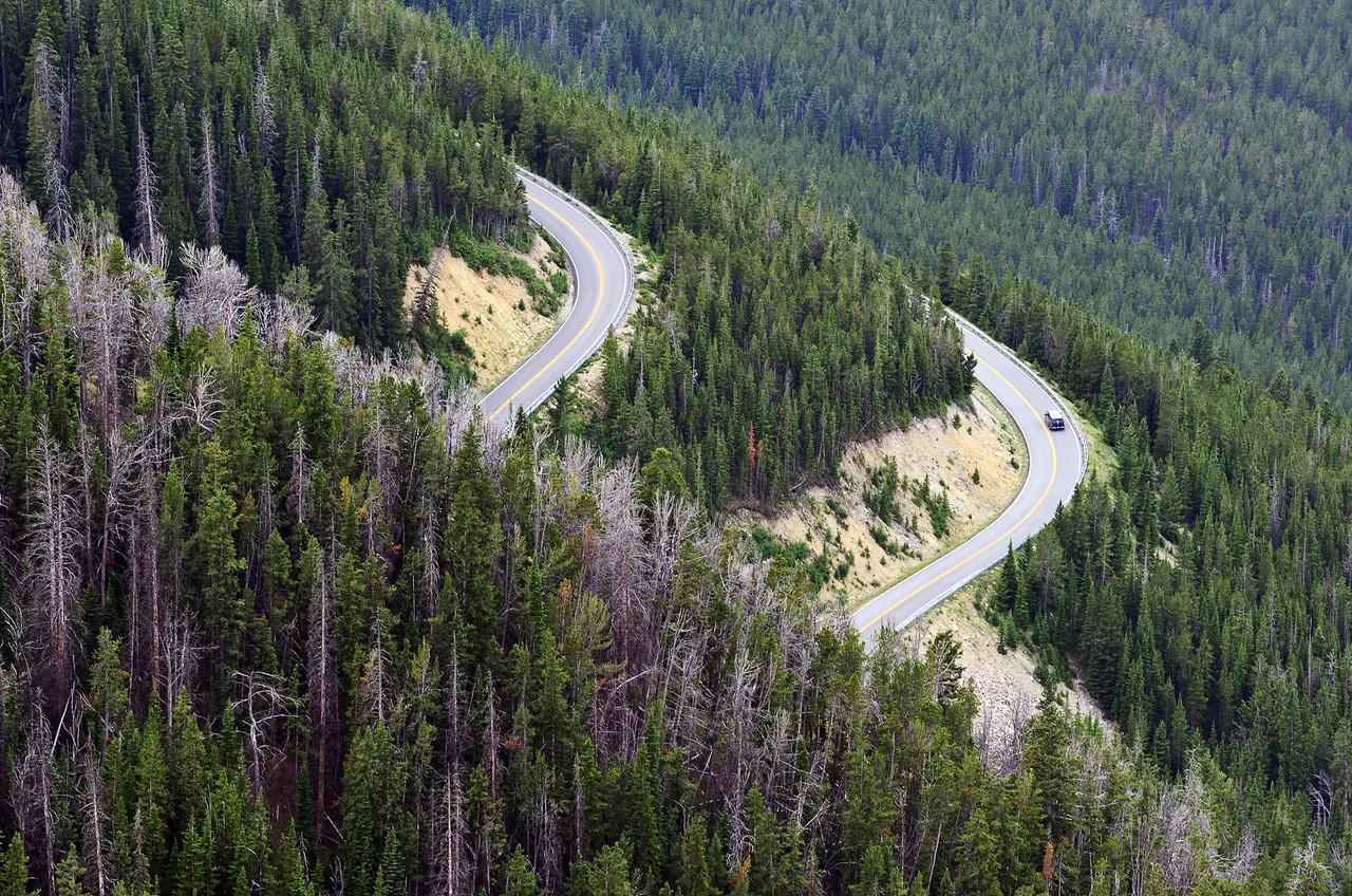 Beartooth Highway, или маленькие радости жизни.