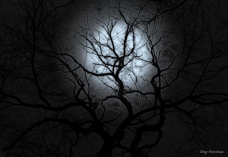 """Moon Over Bourbon Street"""