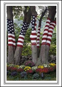 9/11 Memorial - Autumn