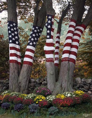 9/11 Memorial Autumn