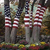 Old Glory - Autumn Available in 8x10  or 11x14 print
