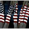 Old Glory - 9/11 Memorial