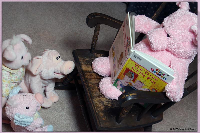 Day 7 - Three Little Pigs