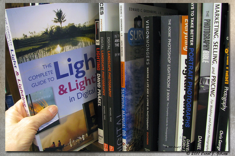 Day 9 - I See the Light - took this while shopping for a book on Light.