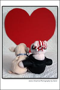 Day 33 - Piggy Love