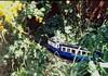 Blue train2