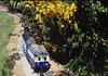 Blue train4