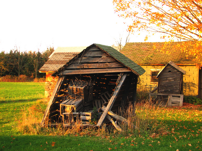 Old sheds at sunset, Walworth NY.