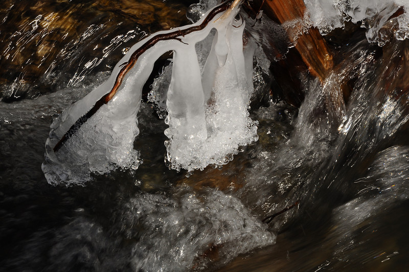 Ice in a stream near Canadice Lake