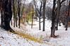 Highland Park 111714 3 DSC_2718
