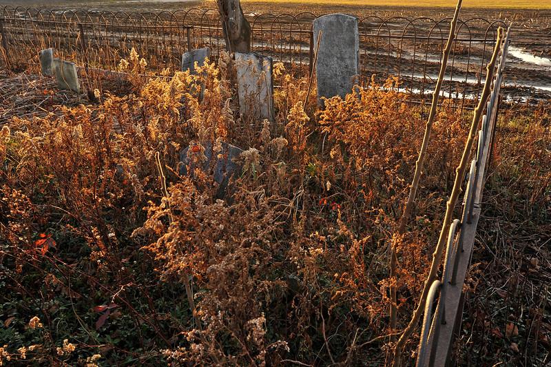Old cemetery Cohocton 9 DSC_6475