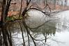 Durand Park, Rochester NY  DSC_1160