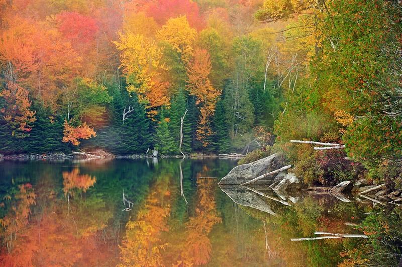 Adirondack lake DSC_9199