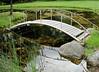 Ridgeway pond and bridge 090614 5 DSC03161