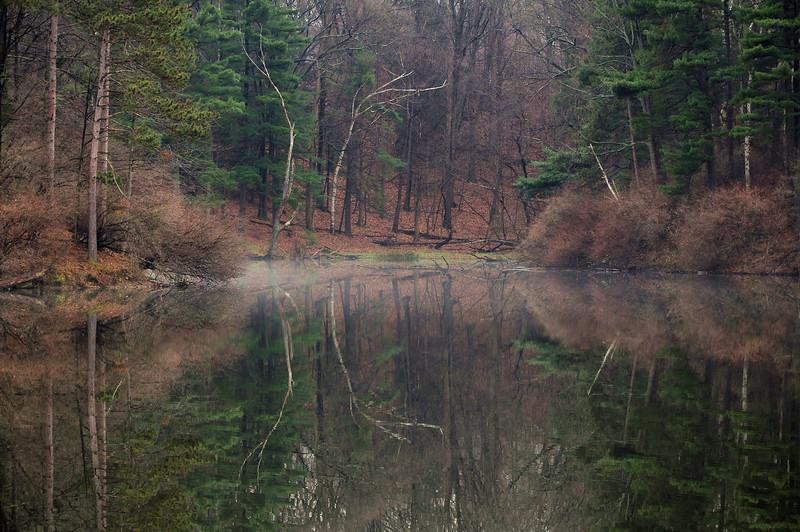Durand Park, Rochester NY DSC_1141