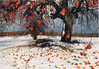 The Apple Tree #1