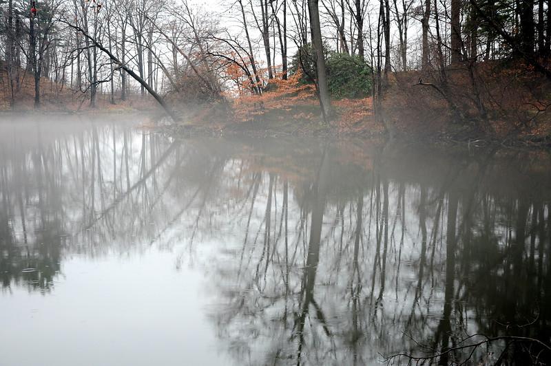 Durand Park, Rochester NY DSC_1172