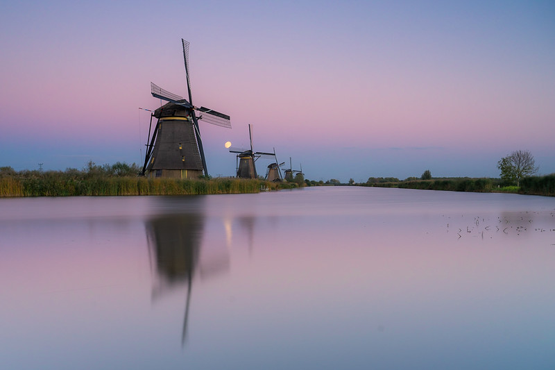 Windmills moonrise