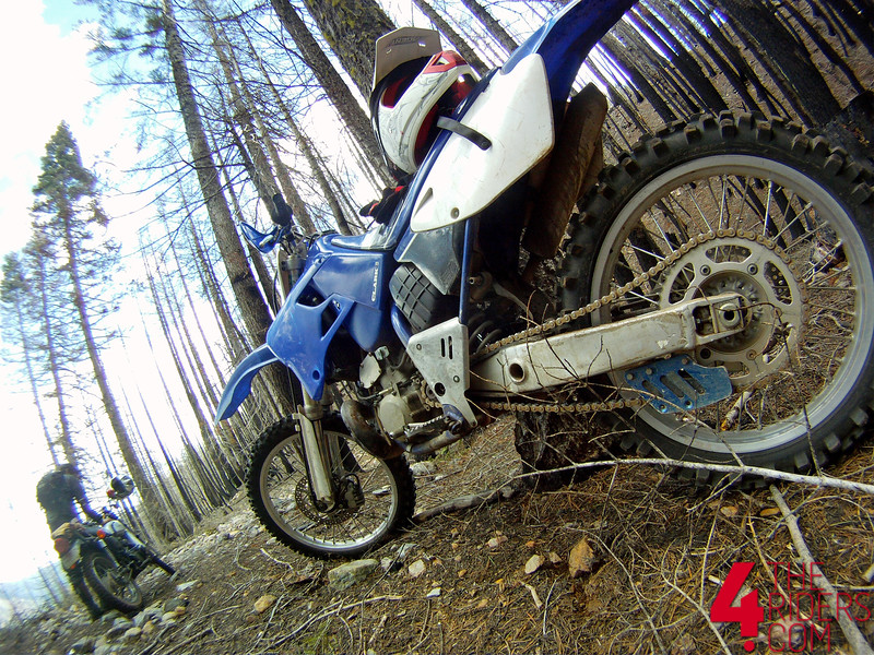 yz250 two stroke 2t yamaha forest dirtbike