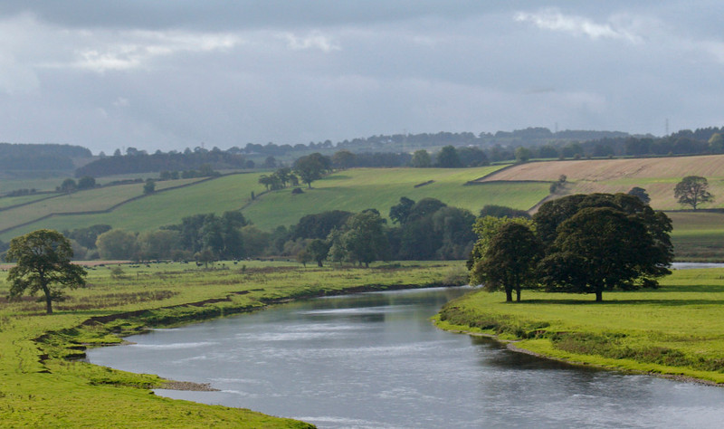 Looking west over the River Eden, south of Lazonby, 10 October 2009 - 1345