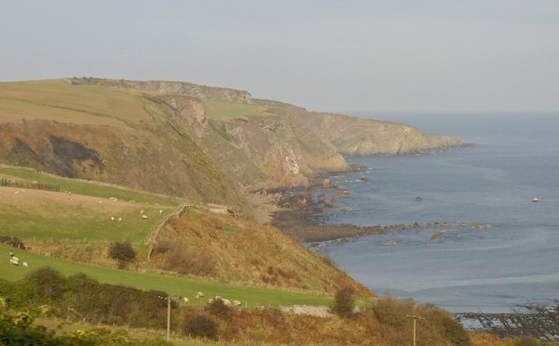 Looking north near Eyemouth, Sat 19 November 2011 - 1055.