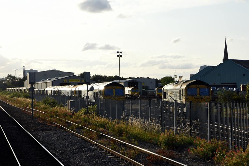 Freightliner Leeds Vehicle Maintenance Facility, Stourton, Thurs 18 July 2019 2.  Freightliner's ten demic 70s are lined up in the far distance at left.  At centre are 66526 and 66563, and at right are 66420 and 66547 (nearest).