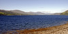 Looking north east up Loch Carron from near Strome Ferry, Sat 19 June 2010 - 1647