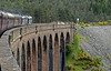 37610 T S (Ted) Cassady & 37608, 1Z41, crossing Culloden Moor Viaduct, Mon 21 June 2010 - 1022