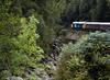 40145 East Lancashire Railway, 1Z40, Monessie Gorge, 25 August 2007 - 1436