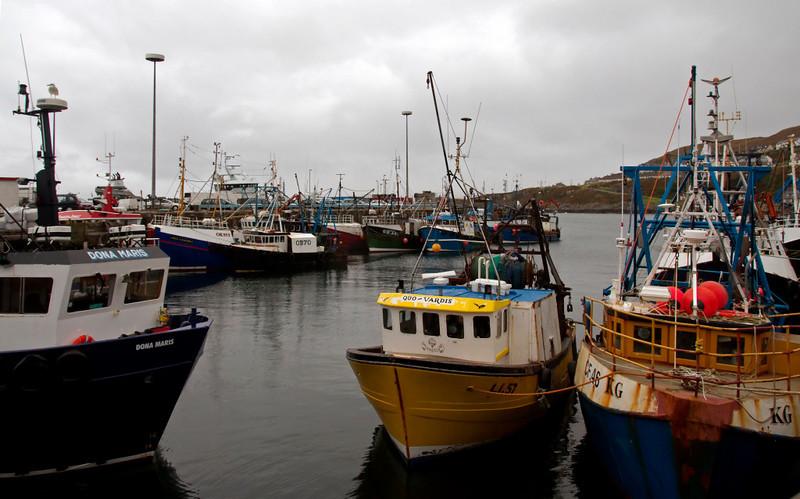 Mallaig harbour, 26 September 2009