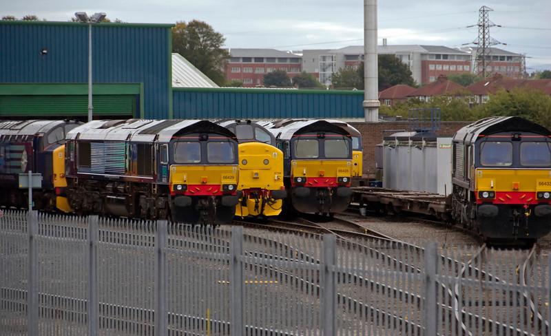 DRS depot, Carlisle Kingmoor, 25 September 2009 - 1340 4: 37682, 66429, 37194, 66428, 57010 & 66433