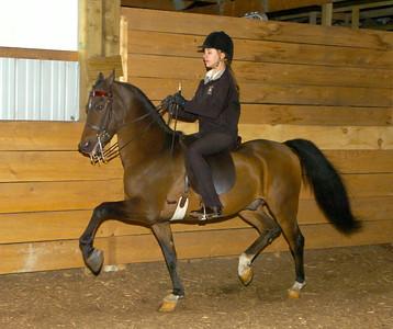 "Hannah Carr trains on ""Willie"" Wednesday at Trinity Morgan Farm in Broadalbin. Ed Burke 9/30/09"