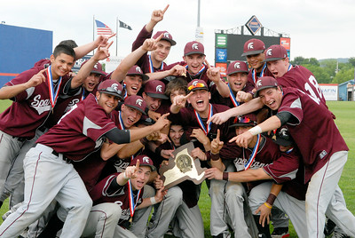 Burnt Hills-Ballston Lake Baseball teammates celebrate after their State Championship win against Pittsford Surtherland in Binghamton Sunday afternoon. Photo Erica Miller 6/12/11 spt_BHBLwin7_Mon