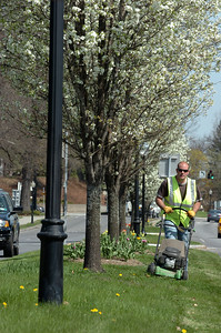 Saratoga Springs DPW worker Tom Brown cuts the grass amid flowering trees on Rt. 9 in the median Tuesday morning. photo Rick Gargiulo news_flowermoe_wed 4/28/09