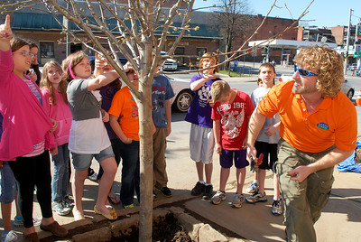 Earth Care Plus owner Wayne McCormick walks around the new Cleveland Select Pear Pyrus Calleryana as fifth graders from the Malta Ave Elementary school, in Ballston Spa, planted this tree in celebration of Arbor Day and cleaning the streets of Ballston Spa on the corner of Malta Ave and Milton Ave. Photo Erica Miller 4/29/11 news_ElemPlant1_Sat