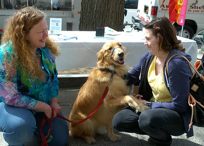 Samantha Garwood of Saratoga Springs visits with Maggie Fronk and Andy, her  golden retriever Saturday on Broadway near Impressions. Fronk and Andy were helping publicize the Safe Pet Partnership program, a project of the Domestic Violence & Rape Crisis Services of Saratoga County where Fronk is Executive Director. Ed Burke 4/28/12